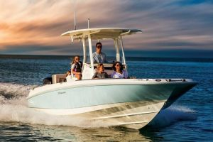 2019 BOSTON WHALER 270 DAUNTLESS for sale