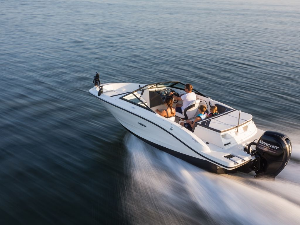2016 Sea Ray 19 Spx Sport Outboard