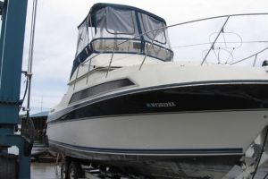 1990 CARVER SANTIAGO for sale