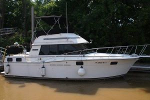 1985 CARVER 3207 for sale