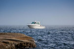 2015 BOSTON WHALER 315 PILOTHOUSE for sale