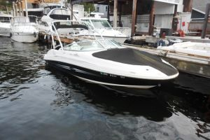 2007 SEA RAY 220SD for sale