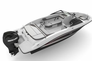 2015 SEA RAY 21 SPX SPORT OUTBOARD for sale
