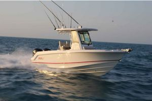 2017 BOSTON WHALER 250 for sale