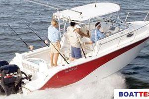 2009 Sea Fox 256WA