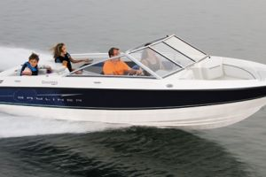2010 Bayliner DISCOVERY 195