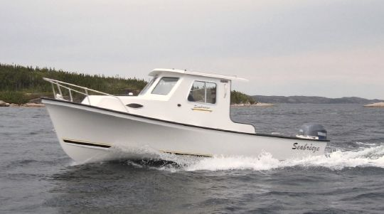 2015 Seabreeze 22 HALF CABIN