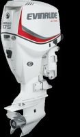 Evinrude E-TEC 175 hp Buyers Guide Photo