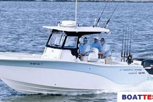 2009 Sea Fox 286CC