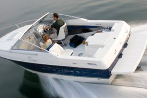 2010 Bayliner DISCOVERY 192