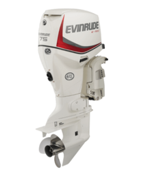 Evinrude E-TEC 75 HP Buyers Guide Photo