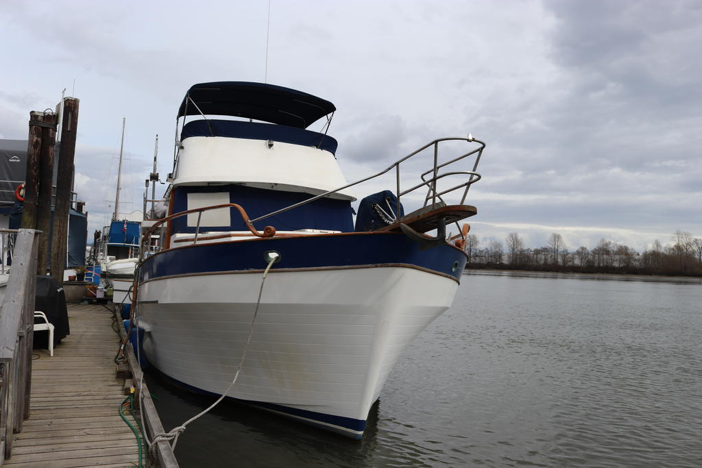 1981 Sea Ranger boat for sale, model of the boat is Pilot House & Image # 18 of 24
