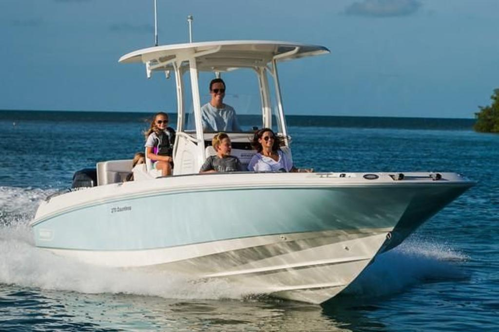 2019 Boston Whaler boat for sale, model of the boat is 270 Dauntless & Image # 1 of 4