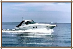2011 SEA RAY 390 SUNDANCER for sale