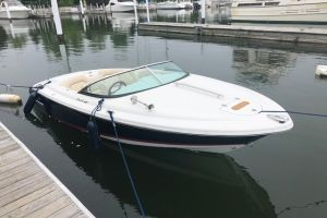 2008 CHRIS CRAFT 20' LANCER for sale