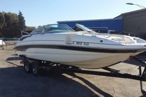 2008 BRYANT 255 for sale
