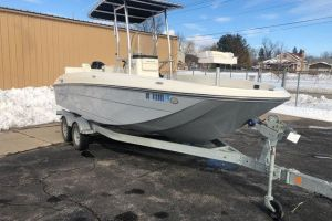 2017 BAYLINER 210 ELEMENT/F for sale